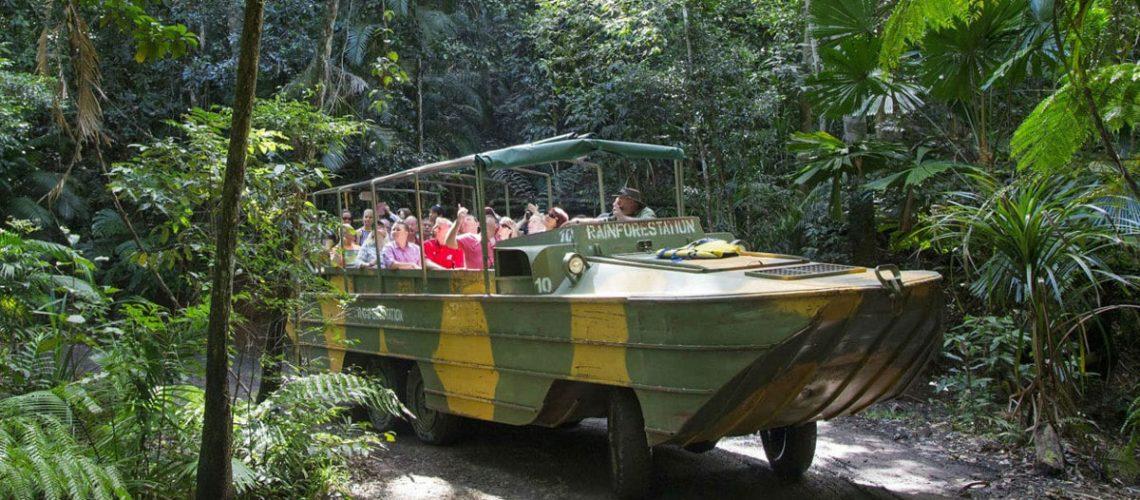army-duck-rain-forest